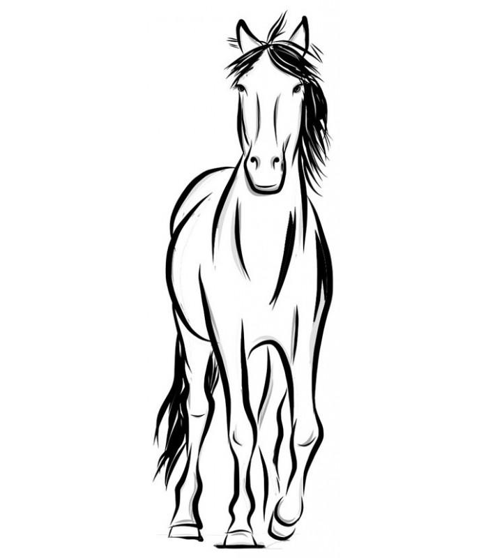 image cheval de face