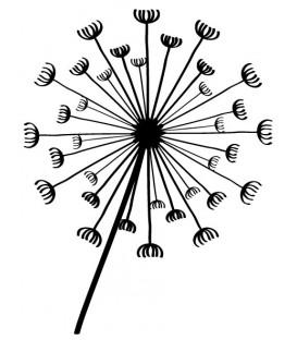 Tampon  Dandelion 4