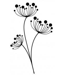 Rubber stamp - Flowers umbellifers