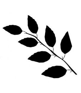 Tampon Branche de feuilles