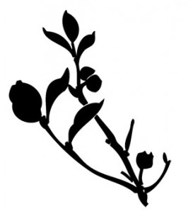 Rubber stamp - Silhouette Branch & leaves 1