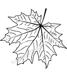 Rubber stamp - maple leaf