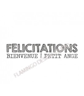 Rubber stamp - Gwen Scrap Collection 2- Félicitations Bienvenue Petit Ange